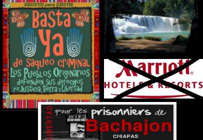 http://liberonsles.files.wordpress.com/2012/06/bachajonlib.png