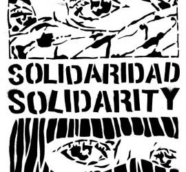SolidaridadPalestina-270x250